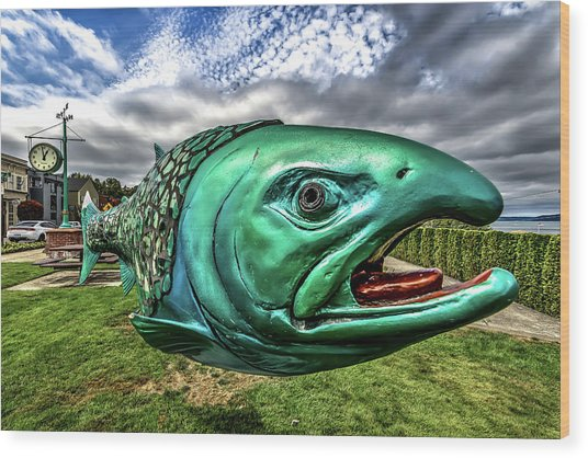 Soul Salmon In Hdr Wood Print