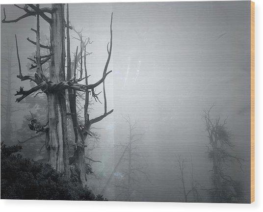 Souls Wood Print