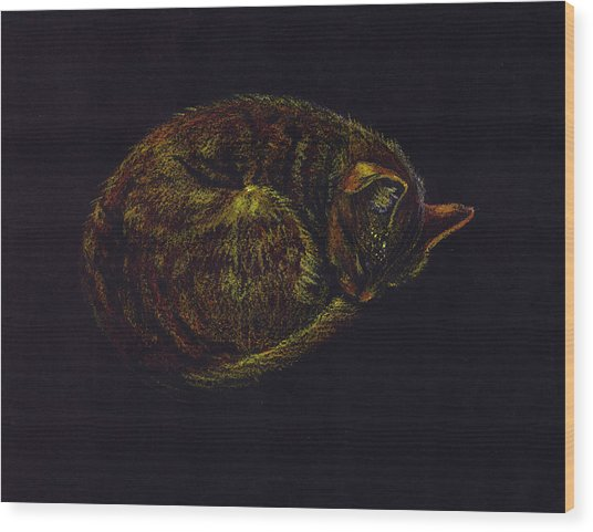 Sound Asleep II Wood Print by Mui-Joo Wee