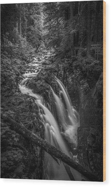 Sound Of Strength Wood Print