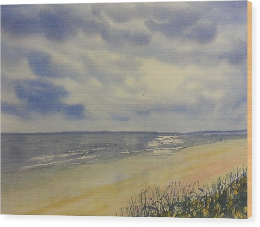 South Beach From The Dunes Wood Print