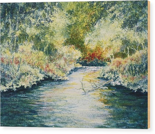 South Branch Of The Little Wolf Wood Print