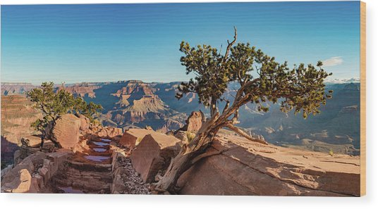South Kaibab Grand Canyon Wood Print