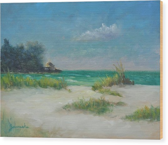 South Lido Morning By Alan Zawacki  Wood Print