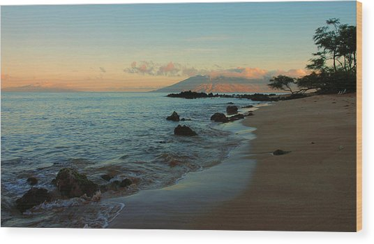South Shore Dawn Wood Print