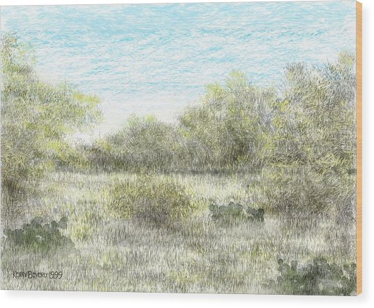 South Texas Brush Country II Wood Print