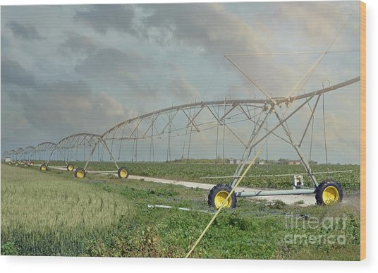 South Texas Irrigation Wood Print by Darla Rae Norwood