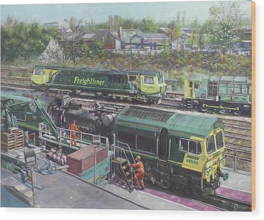 Southampton Freightliner Train Maintenance Wood Print