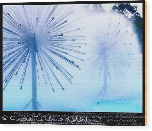 Southern California Fountains Wood Print