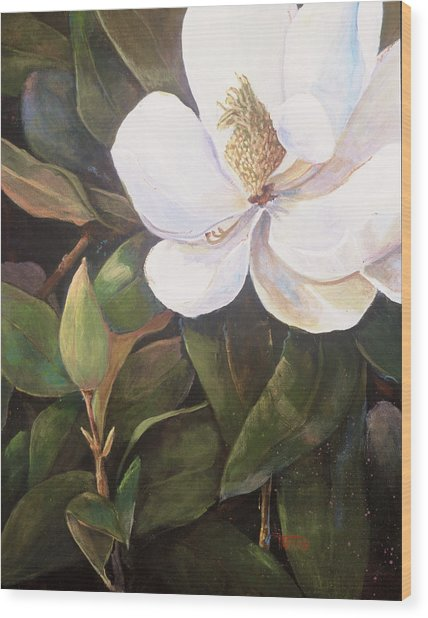 Southern Magnolia Wood Print by Jimmie Trotter