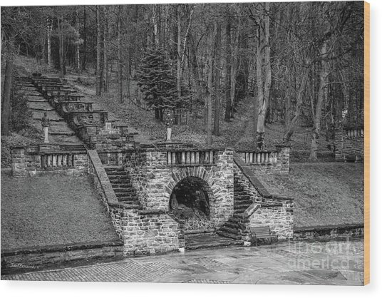 Southern Vermont College The Cascade Wood Print