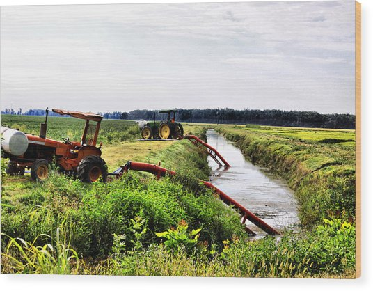 Southern Watering Hole Wood Print