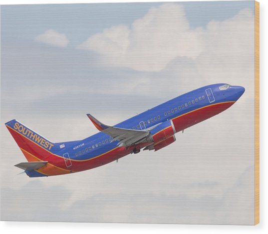 Southwest Jet Wood Print