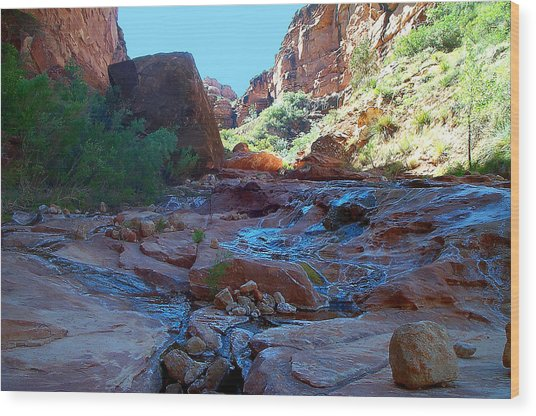 Sowats Creek Kanab Wilderness Grand Canyon National Park Wood Print