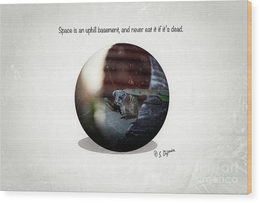 Space Is An Uphill Basement  Wood Print by Steven Digman