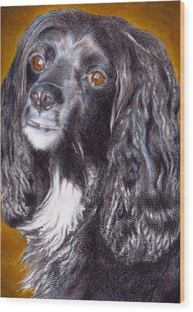 Spaniel Eloquence Wood Print