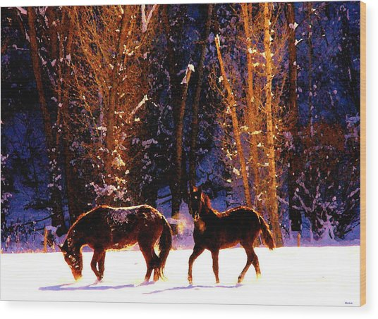 Spanish Mustangs Playing In The Powder Snow Wood Print