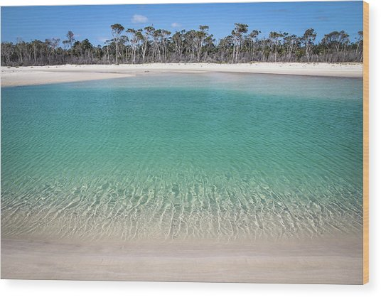 Sparkling Beach Lagoon On Deserted Beach Wood Print