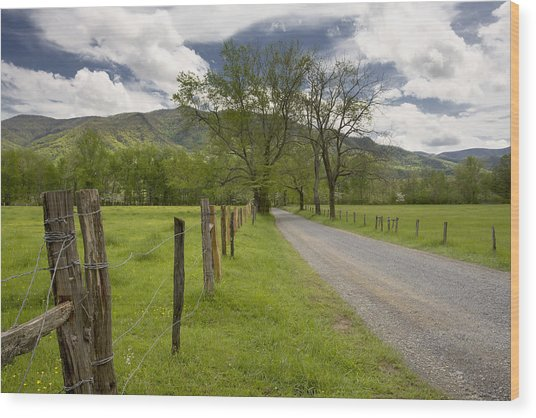 Sparks Lane In Cade Cove Wood Print