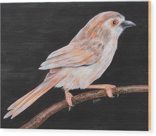 Sparrow Wood Print by Rajesh Chopra