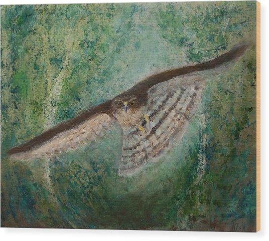 Sparrowhawk Hunting Wood Print