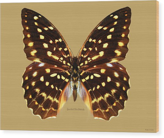 Speckled Hen Butterfly Wood Print