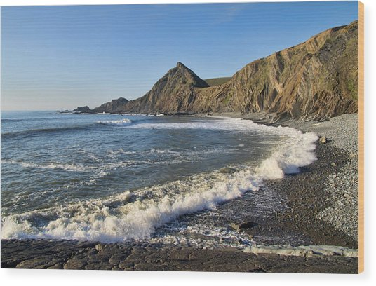 Spekes Mill Beach Wood Print