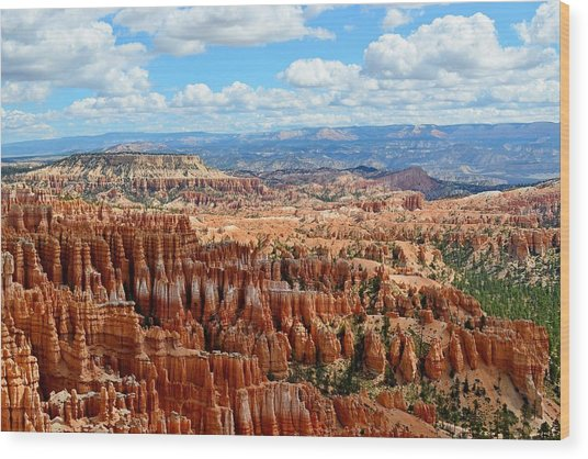 Spellbound - Bryce Canyon National Park, Utah Wood Print