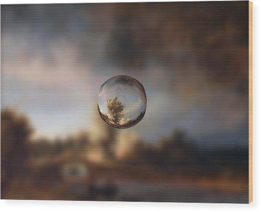 Sphere 13 Rembrandt Wood Print
