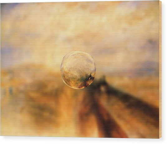 Sphere 8 Turner Wood Print