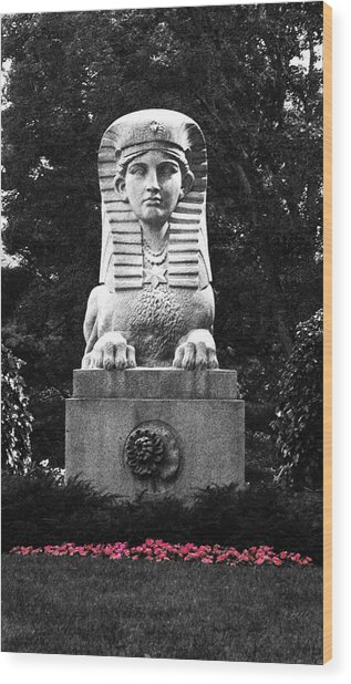 Sphinx In New England Wood Print by Brigid Nelson