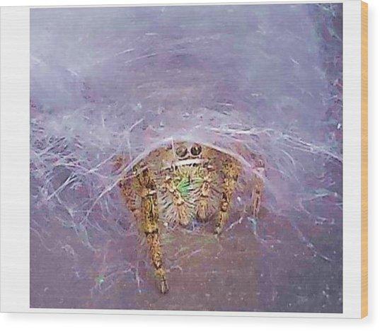 Spider Wood Print by Joanne Elizabeth
