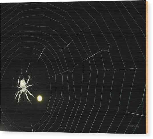 Spider Moon Wood Print
