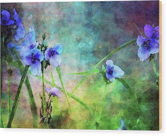 Spiderwort Dance 0115 Idp_2 Wood Print