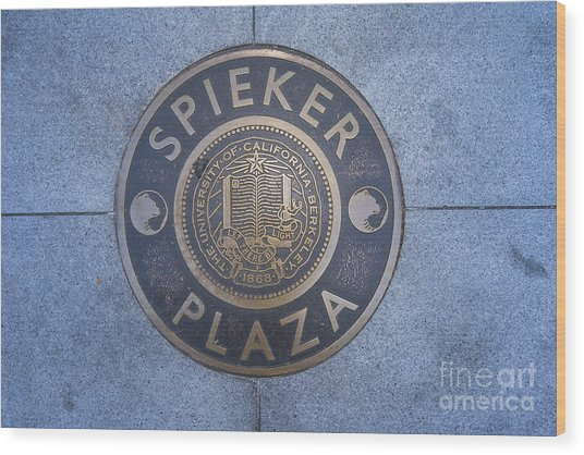Spieker Plaza Monument At University Of California Berkeley Dsc6305 Wood Print
