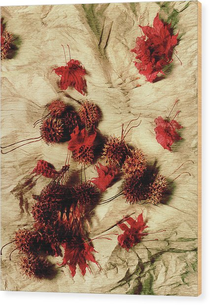 Spiked Nuts Red Wood Print