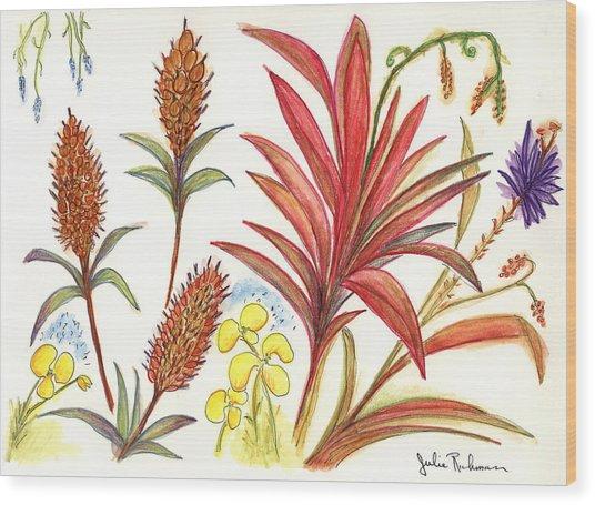 Spiky Florida Flowers Wood Print by Julie Richman