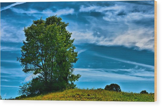 Sping Landscape In Nh 3 Wood Print by Edward Myers