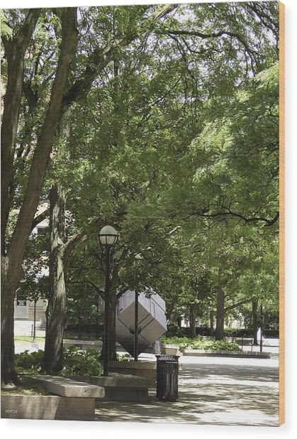 Spinning Cube On Campus Wood Print