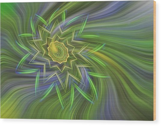 Spinning Star Wood Print by Linda Phelps