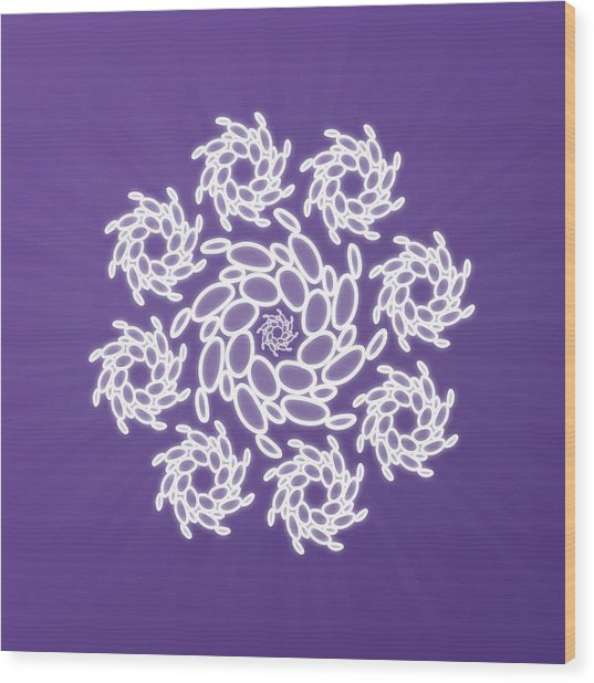 Spiral Dance Wood Print