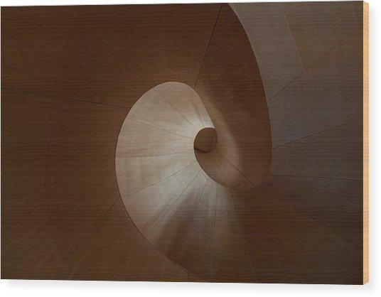 Spiral Wood Print by Heather Bonadio
