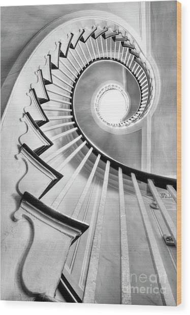 Spiral Staircase Lowndes Grove  Wood Print