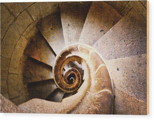 Spiral Steps Wood Print