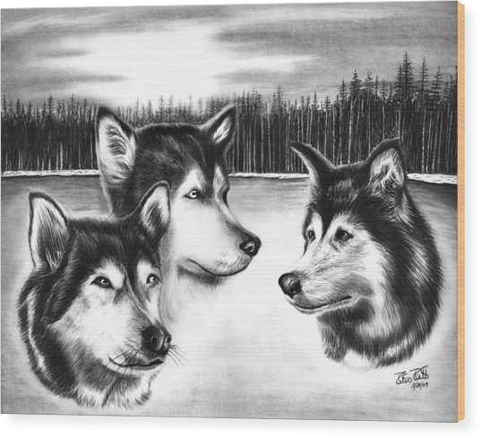 Spirit Guides  Wood Print