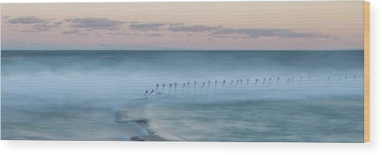 Spirit Of The Ocean Wood Print
