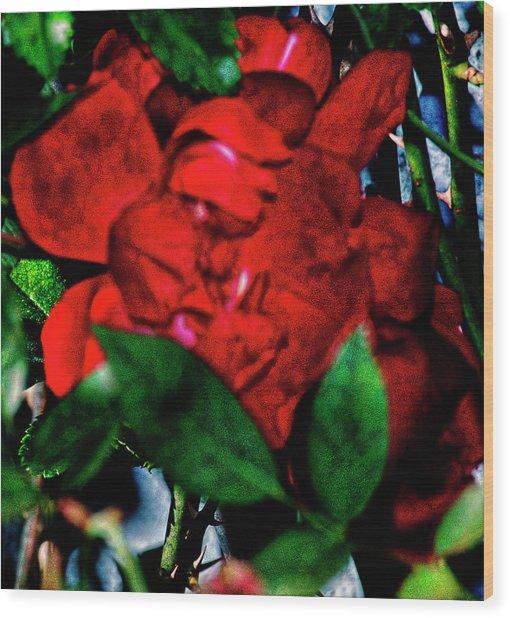 Spirit Of The Rose Wood Print