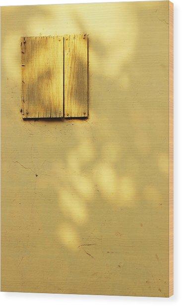 Spiritual Awakening  Wood Print by Prakash Ghai