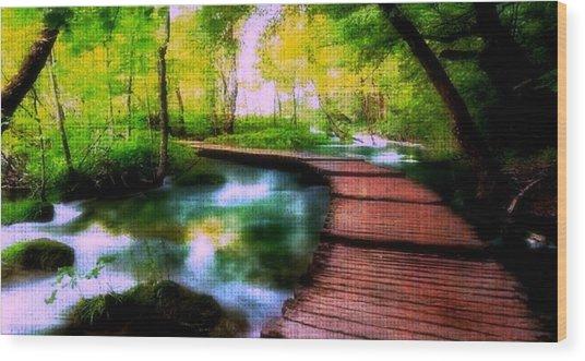 Spiritual Walk Wood Print