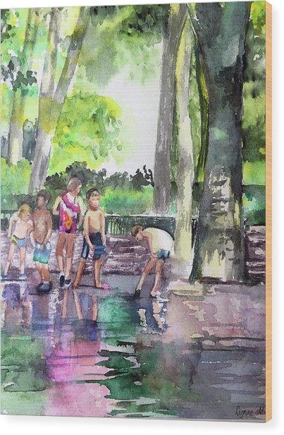 Splash In Battery Park Wood Print